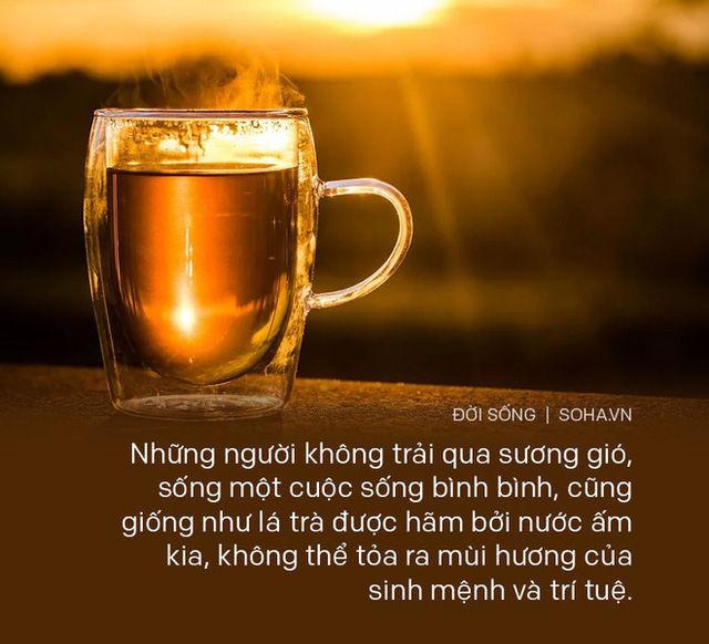Cố tình pha trà bằng nước ấm, hòa thượng già chỉ cho chàng trai 1 đạo lý, giúp rũ bỏ hết muộn phiền, bất mãn với cuộc sống - Ảnh 3.