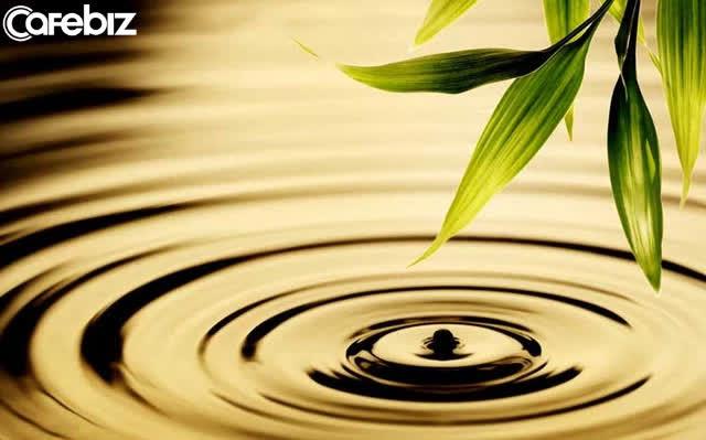 Thiền sư Thích Nhất Hạnh: Trong nếp sống chánh niệm, con người ta có được hạnh phúc - Lời khuyên đặc biệt ý nghĩa giữa lúc Covid-19 căng thẳng  - Ảnh 3.
