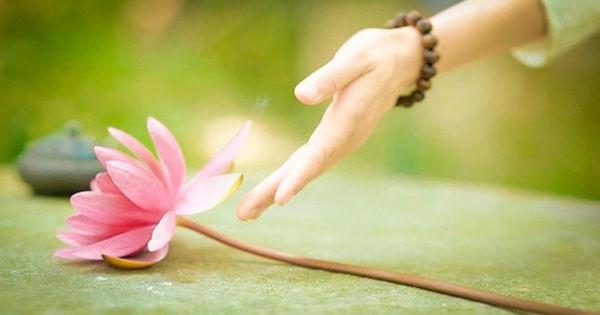 """Câu chuyện """"mở cửa trái tim"""" của thiền sư Ajahn Brahm sẽ khiến nhiều người phải suy ngẫm"""