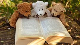 6 bước để đọc sách hiệu quả hơn