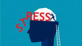 7 kế đơn giản giúp giảm lo lắng