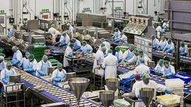 DN kiến nghị: Không phải cứ có ca F0 là đóng cửa toàn bộ nhà máy