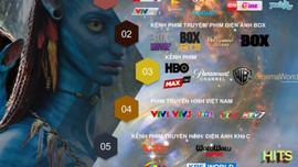 Hàng loạt kênh truyền hình quốc tế dừng phát sóng, truyền hình trả tiền 'bù' bằng nhiều kênh mới